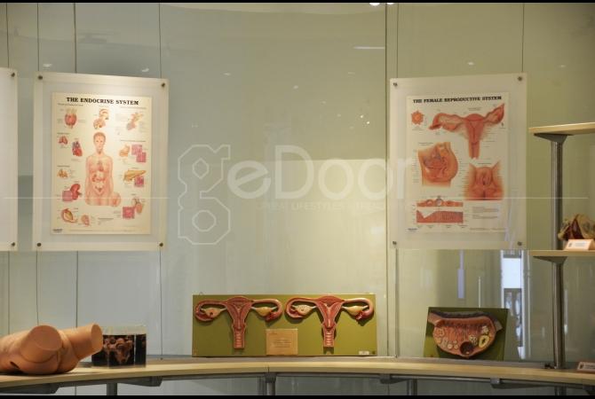 Museum ini dibangun dengan visi menyediakan tempat untuk pendidikan anatomi tubuh manusia
