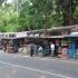 Pasar Burung Dan Hewan Murah Di Jalan Barito